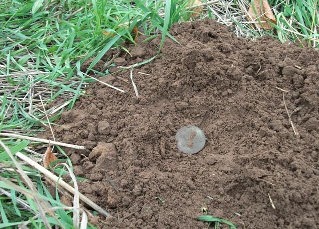 Старинная монета своими руками