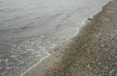 Находки на старом пляже — золотая цепочка с крестиком