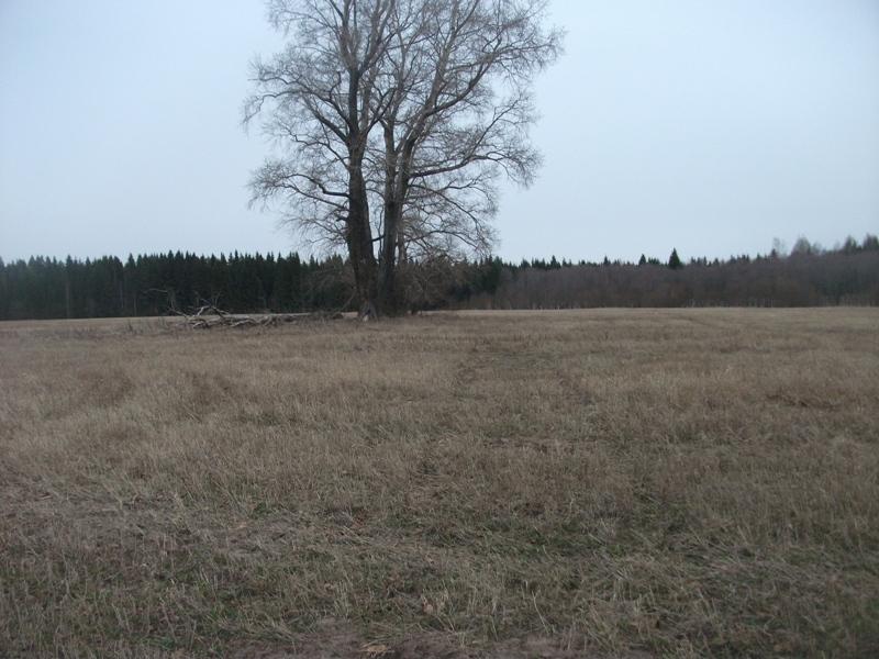 место бывшей деревни